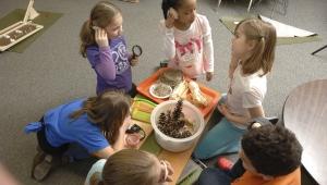 Cowles Montessori Elemntary School students expirement with STEM Scale-Up programs